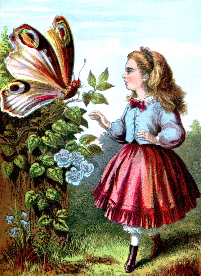 Image:  How Lady Butterfly Spent the Day from Nursery Colored Picture Book ca 1870