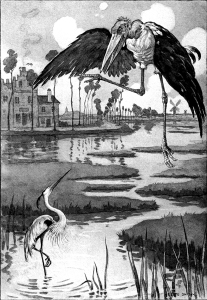 Illustration: The Curious Book of Birds. Written by Abbie Farwell Brown. Illustrations by E. Boyd Smith. Houghton, Mifflin & Company: Boston & New York. 1903.