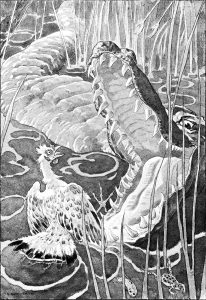Illustration: Crocodile and Hen. The Curious Book of Birds. Written by Abbie Farwell Brown. Illustrations by E. Boyd Smith. Houghton, Mifflin & Company: Boston & New York. 1903.
