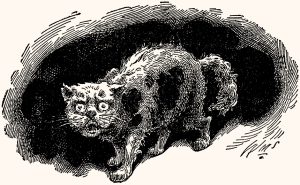 Illustration: Tom Cat. Illustration: Tom Cat. Peck's Bad Boy and His Pa. Written by George W. Peck. Illustrated by True Williams. W. B. Conkey Company. 1900