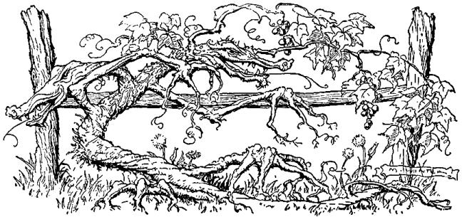 Illustration: Fierce & Fiery Dragon.  Billy Popgun.  Written and Illustrated by Milo Winter.  Houghton Mifflin Company: Boston & New York. 1912.