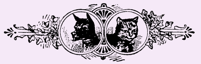 Illustration:  Dog & Cat.  Little Bo-Peep And Other Good Stories.  Henry Altemus Company: Philadelphia. 1905.