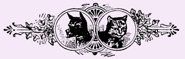 Illustration:  Dog & Cat.  Little Bo-Peep And Other Good Stories.  Henry Altemus Company: Philadelphia. 1905.