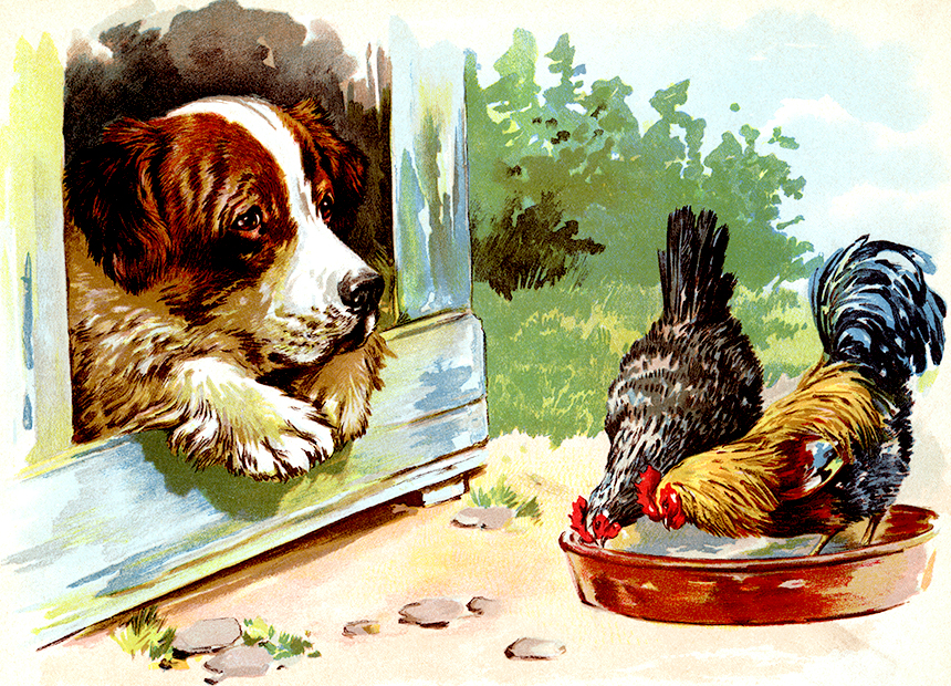 Illustration:  Saint Bernard.  Our Dear Dogs.  Father Tuck's Happy Hour Series.  Raphael Tuck & Sons, Ltd.: London-Paris-Berlin-New York-Montreal. Printed in the Fine Art Works in Saxony.  Publishers to Their Majesties The King & Queen, & Her Majesty Queen Alexandra. Ca 1910.