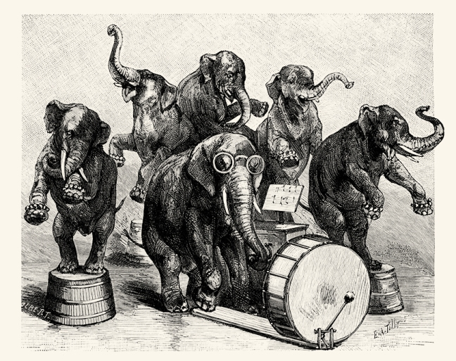 Illustration:  Elephant's Concert. Animal Antics.  Louis Wain.  S. W. Partridge & Co: London. Ca 1900-1910.