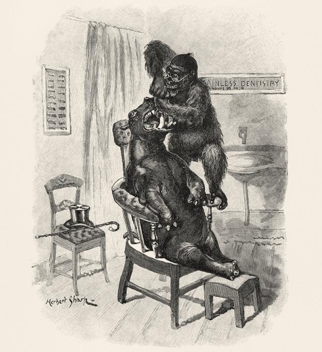 Illustration:  Painless Dentistry.  Animal Antics.  Louis Wain.  S. W. Partridge & Co: London. Ca 1900-1910.