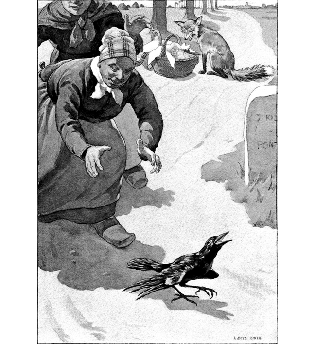 "Illustration:  From the Story: ""THE BLACKBIRD AND THE FOX""  The Curious Book of Birds.  Written by Abbie Farwell Brown.  Illustrations by E. Boyd Smith.  Houghton, Mifflin & Company: Boston & New York. 1903."