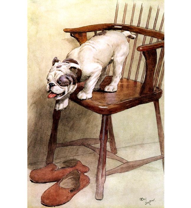 Illustration:  OUR FRIEND THE DOG.  By Maurice Maeterlinck.  Illustrated by Cecil Alden.  Dodd, Mead & Company: New York. 1913.