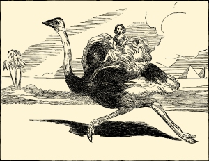 Illustration: THE OSTRICH CARRIAGE. Tiny and Her Vanity. McLoughlin Bros.: New York. Ca 1892.