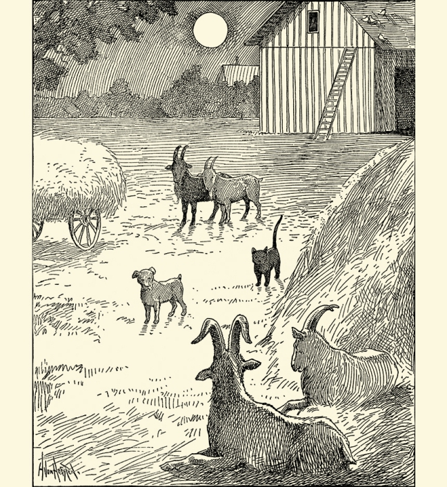Illustration:  Billy Whiskers, Jr. and His Chums.  By Frances Trego Montgomery.  Illustrated by Hugo von Hofsten.  The Saalfield, Publishing Company: Chicago, Akron, Ohio & New York. 1907.